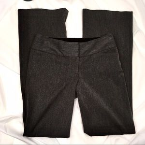 EXPRESS EDITOR in dark Gray with long straight leg